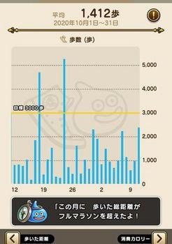 10060 DQW202011-01.jpg