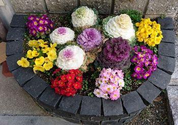 10432 玄関の花202103.JPG