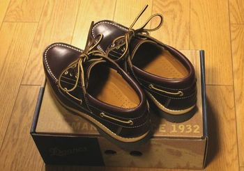 3550 新しい靴201504.jpg