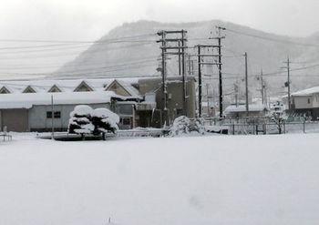 5519-2 雪201701-06.jpg