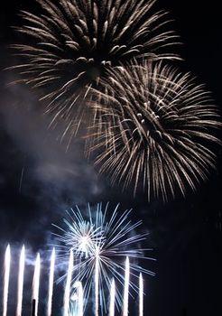 8525-2 花火201907-12.JPG