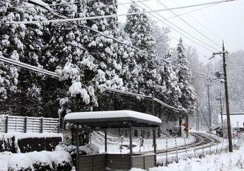 9151 雪202002-2.JPG