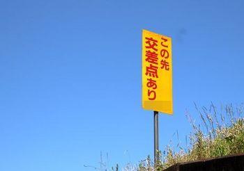 9498 散歩202005-2.JPG